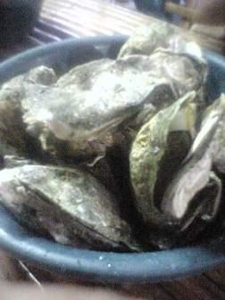 capiz seafood